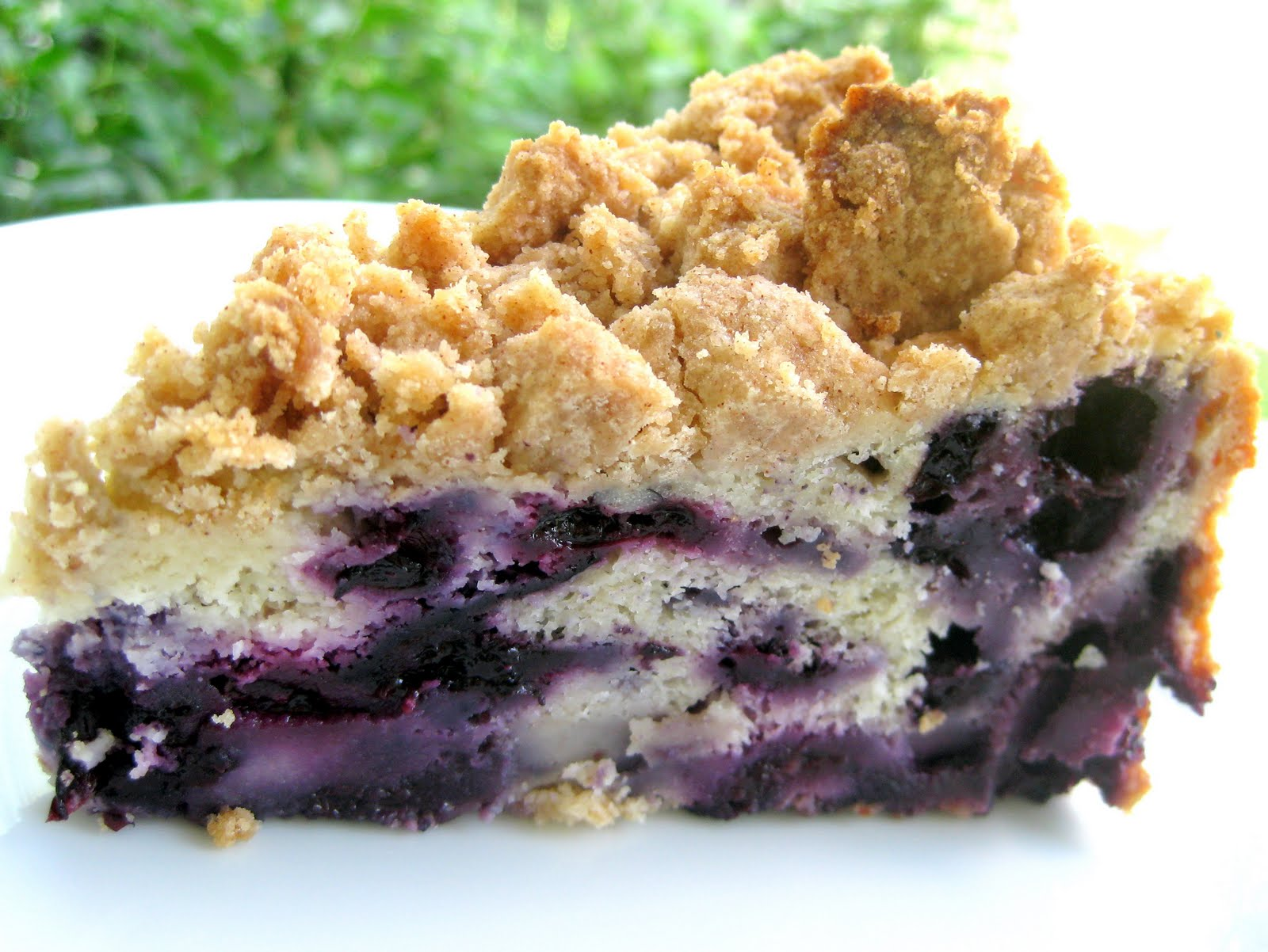 Blueberry Buckle | A Hint of Honey
